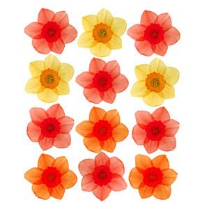 포인트 벽지 꽃송이(cp-14)/시트지