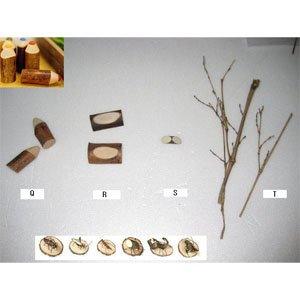 만들기재료/교육용교재/그리기나무조각/천연나무조각(Q.R.S.T)