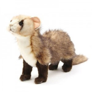 [HANSA]Ferrets stn(페럿1) 4346번/50x28cm