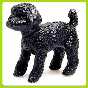 마그 이누-5.토이푸들-블랙