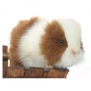 [HANSA] Guinea Pig BR/WH(기니피그1) 3735번/20cm.L