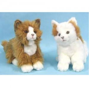 [HANSA] Cat BG(고양이베이지색1) 3983번/23cm.L
