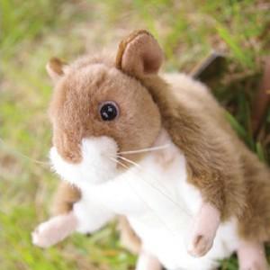 [HANSA] MOUSE-GELBHALS(생쥐1) 3597번/17*32cm