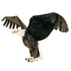 [HANSA]American Eagle(독수리1)3802번/117cm.L