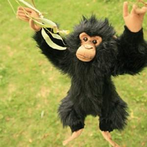 [HANSA] CHIMP MONKEY(침팬지1) 4960번/22*25cm