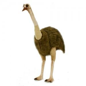 [HANSA] Ostrich Female(타조암컷1) 4308번/177*100cm