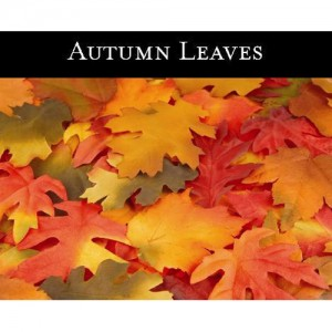 Autumm Leaves (가을 낙옆) - 맥콜캔들