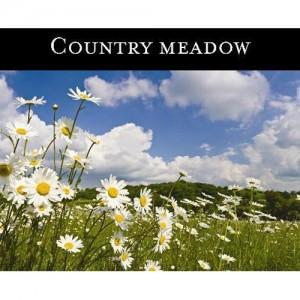 Country Meadow (초원,강변의낮은풀밭) - 맥콜캔들