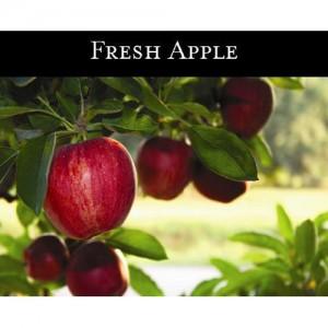 Fresh Apple (신선하고 맑은사과) - 맥콜캔들