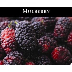 Mulberry (오디나무) - 맥콜캔들