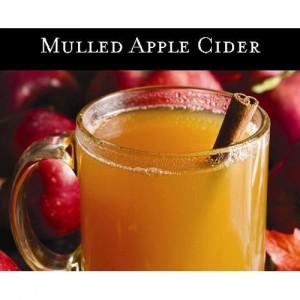 Mulled Apple Cider (향기로운 사과술) - 맥콜캔들