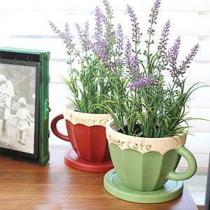 라벤더 커피잔 화분