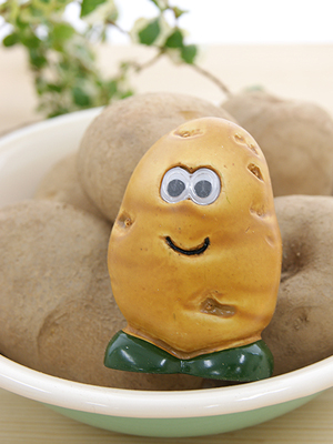 Mr.potato 브러쉬