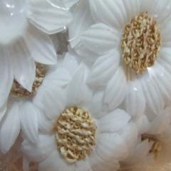 마국화/20개 흰색/장식공예,만들기재료