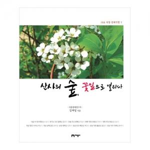 [지성사] 산사의 숲, 꽃잎으로 열리다