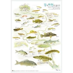[홀씨] 강과 하천의 물고기 포스터