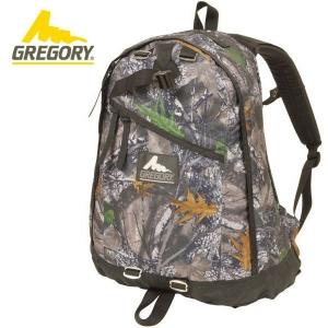[그레고리] 데이팩 22L Daypack - Blackwood Timber DY 클래식 - 라이프스타일