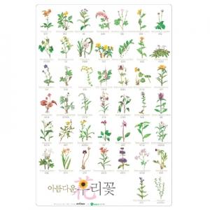 아름다운 우리꽃 포스터