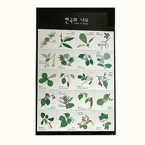 한국의나무(고무자석)