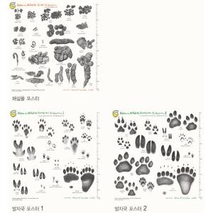 야생동물 발자국 및 배설물 2 (코팅) 포스터