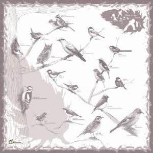 [홀씨] 숲속의새 손수건