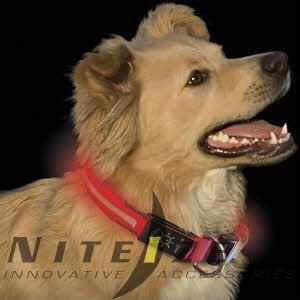 [나잇아이즈] 나이트 도그 Nite Dawg - L.E.D. Dog Collar