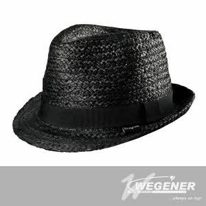 [베게너] 블랙비햇