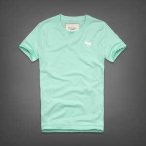 Abercrombie 아베크롬비 남녀공용 반팔 티셔츠 캠쉘마운틴(Kempshall Mountain) - 민트그린