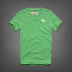 Abercrombie 아베크롬비 남녀공용 반팔 티셔츠 캠쉘마운틴(Kempshall Mountain) - 라이트그린