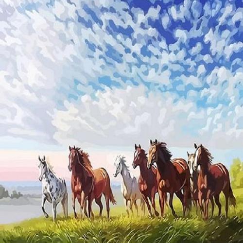 피포페인팅 Q3348 프리덤 DIY명화그리기 홈갤러리
