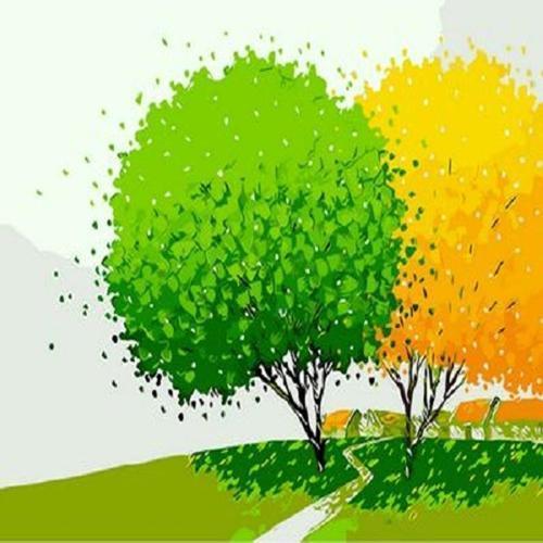 아이윙스 40000 피포페인팅 Q476 행운의나무 시리즈 DIY명화그리기