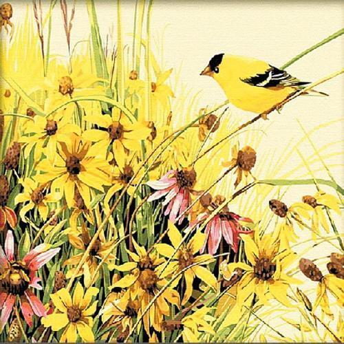 아이윙스 40000 피포페인팅 z092 노랑새와 야생화 diy명화그리기 diy그림그리기