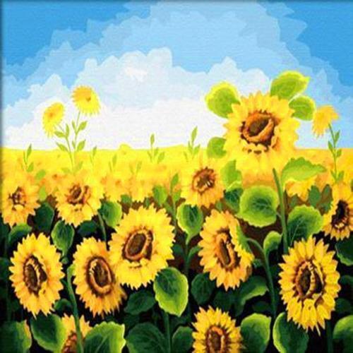 아이윙스 40000 피포페인팅 b61 풍요로운 해바라기밭 diy명화그리기 diy그림그리기