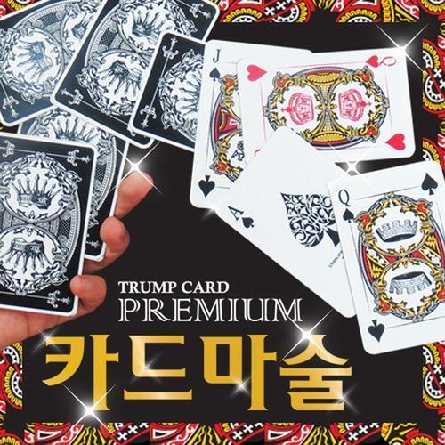 아이윙스 3000 프리미엄 마술카드 카드마술도구세트