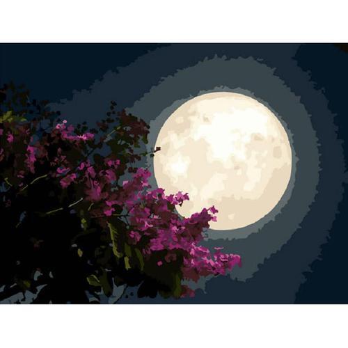 아이윙스 피포페인팅 K100 A 소원 SS2S Moon DIY명화그리기 DIY그림그리기