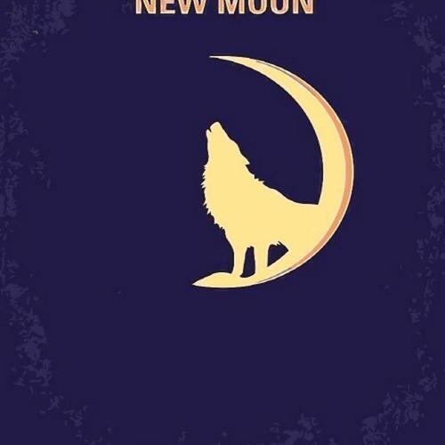 아이윙스 피포페인팅 GX5244 NEW Moon DIY명화그리기 DIY그림그리기