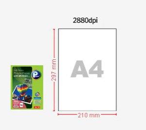 소프트 광택포토용지/V6210-20매/130G