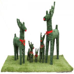 사슴,잔디