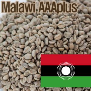 [생두]Malawi AAA+