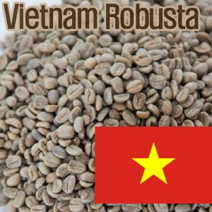 [생두]Vietnam Robusta