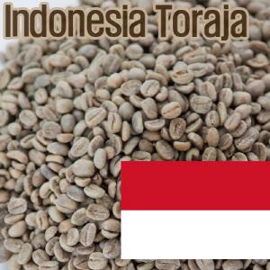 [생두]Indonesia Toraja